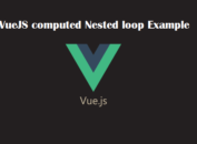 VueJS computed Nested loop Example